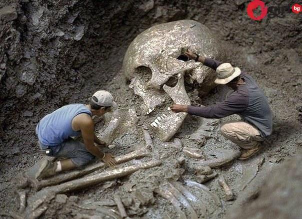 Откриха скелет на великан! Потвърдиха тяхното съществуване