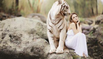 Духовното животно на всяка зодия